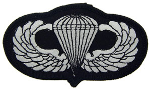 Patch-Army Para Wings