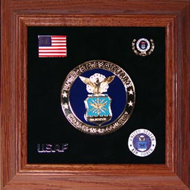 Medallion USAF Framed 4 Round with Pins