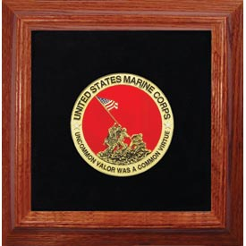 Medallion IWO JIMA Framed 4 Round with Pins