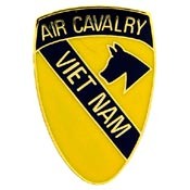 Vietnam 1st Air Cav Pin