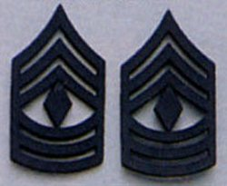 First Sergeant Subdued Pin On Rank
