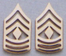 First Sergeant Pin On Rank