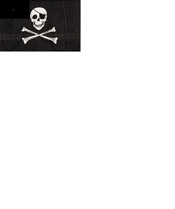 JOLLY ROGER PIRATE FLAG #1464