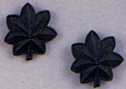 LT Colonel Subdued Pin On Rank